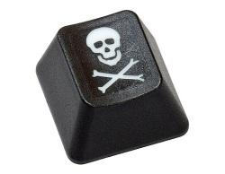 pirateria-internet-111110